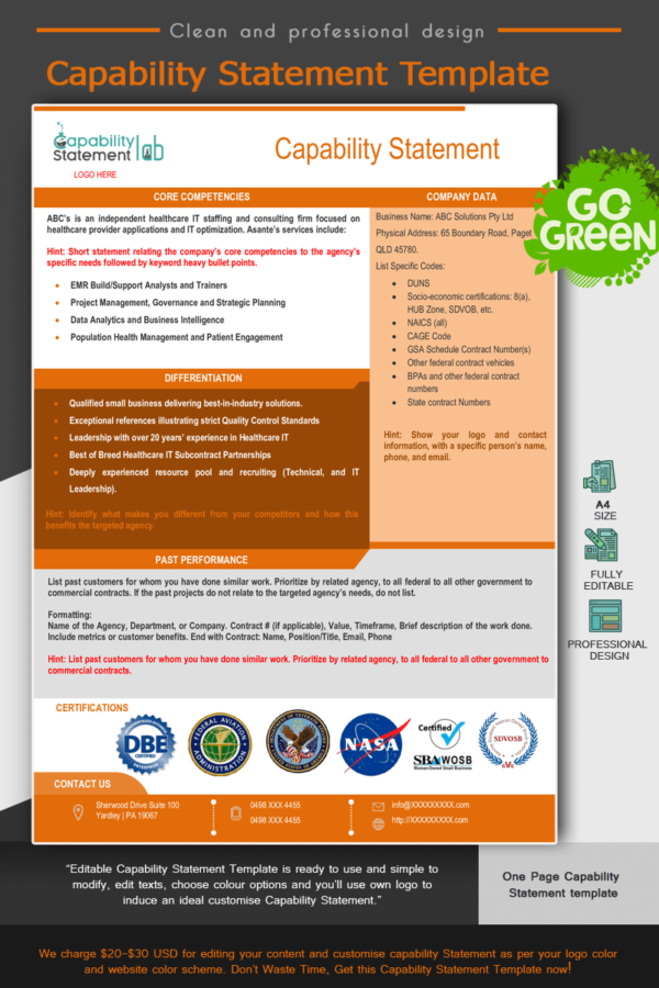 Consultancy Capability Statement Template_Orange