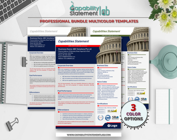 Capitol Hill Capability Statement